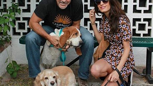 Джордж Клуни и Амал отново осиновиха
