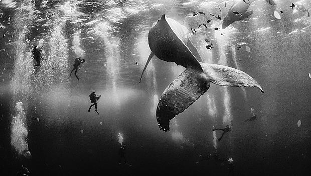 10 впечатляващи снимки от конкурса National Geographic Traveler 2015