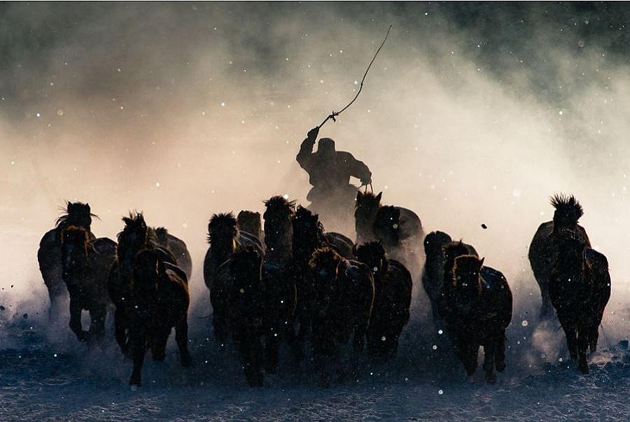 """Голямата награда -  """"Winter Horseman"""", вътрешността на Монголия"""