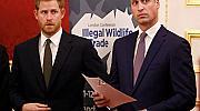 Уилям и Хари се скарали сериозно заради пари