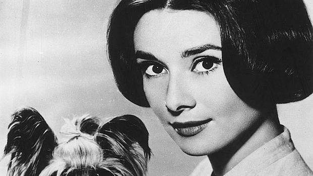 """""""Мога да излъчвам сексапил и докато бера ябълки, и докато стоя под дъжда"""" Одри Хепбърн"""
