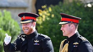 """Принц Уилям: """"Искам с Хари отново да играем в един отбор."""""""