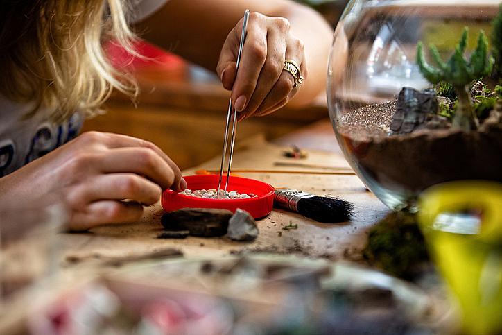 Работилница: около инструментите сложете саксии със змийско цвете, хризантема и английски бръшлян, неутрализиращи пестицидите.