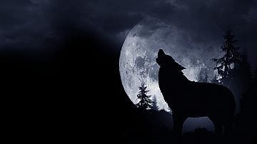 """""""Вълчето"""" пълнолуние през януари 2021 г. променя драматично личния живот"""