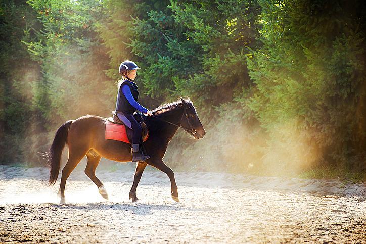 Конна езда: успокоява, премахва стреса, оформя правилна стойка и подпомага хармоничното развитие на всички групи мускули. Препоръчителна възраст за старт: 11-12 години.
