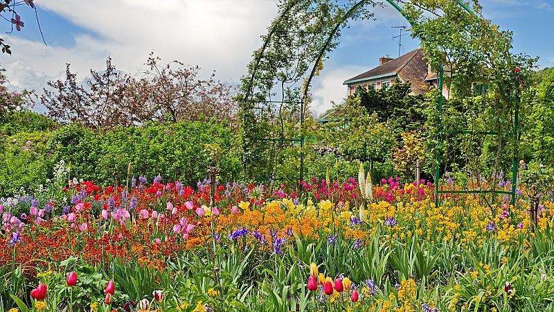 В градината на Моне в Живерни