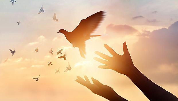 12 мотивиращи мисли за всяка зодия, които ще отключат вашата собствена мъдрост