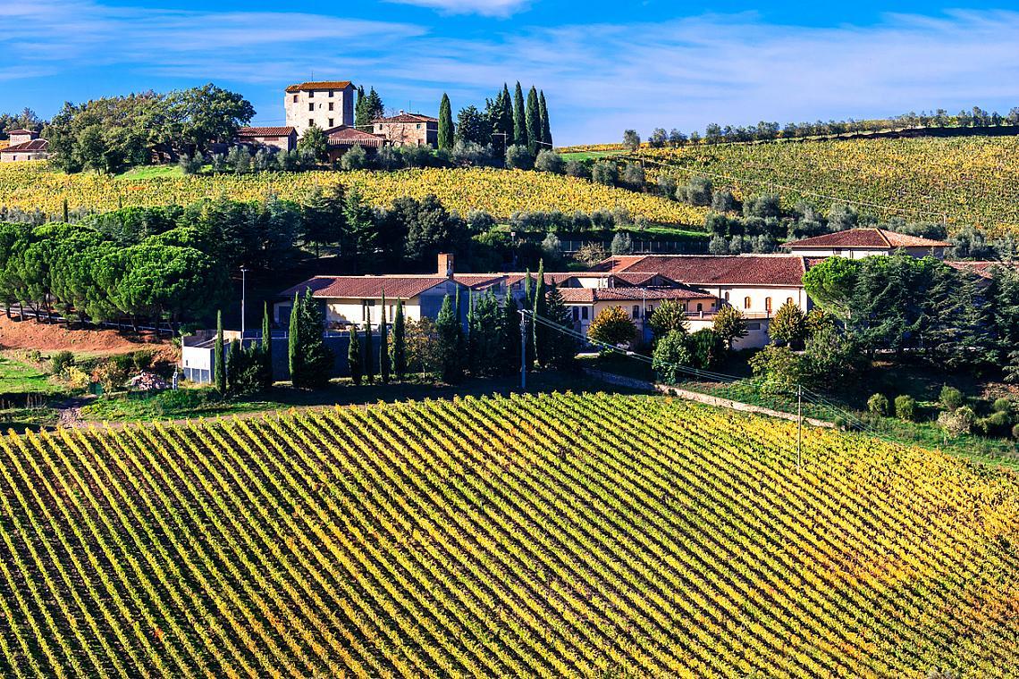 Кианти в Тоскана