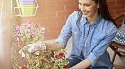 Да преобразим балкона в разкошна градина like a pro
