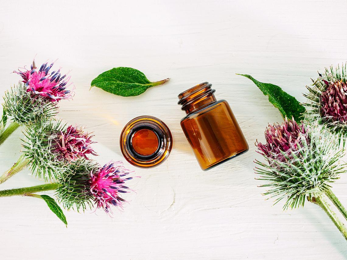 РЕПЕЙ ПРОТИВ ТОКСИНИТЕ В китайската медицина коренът от репей се използва при инфекции, температура, обриви, ревматизъм, артрит, лумбаго, ишиас, но също при нервност и раздразнителност. Китайците са познавали и неговия ефект на афродизиак.  Европейската фитотерапия отдавна го е признала за прочистващо кръвта растение, а желязото, съдържащо се в големи количества в него, позволява използването му при ставни и дерматологични проблеми. Репеят е бил познат и на индианците, които са го използвали редовно под формата на отвара.