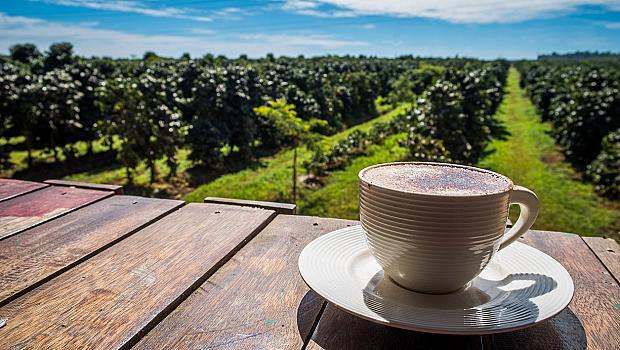 Хондурас - страната на кафето, за която не знаете почти нищо