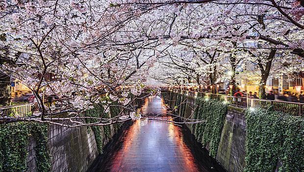 Цветни мисли, с които да отпразнуваме старта на пролетта
