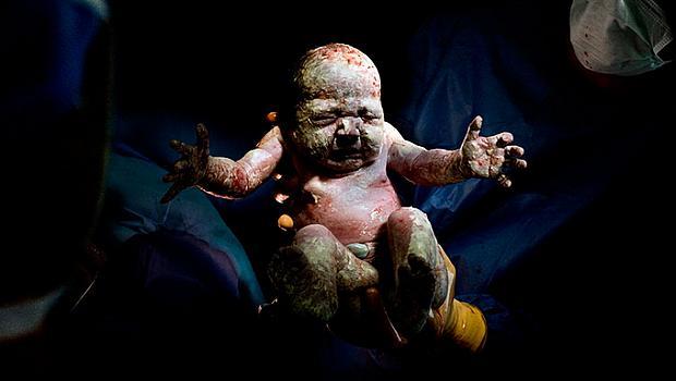 Новородени в изложбата на Кристиан Бертелот