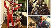 Как звездите украсиха домовете си за Коледа?