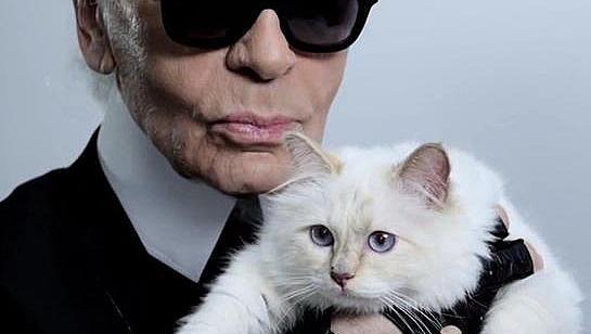Котката на Лагерфелд е милионер