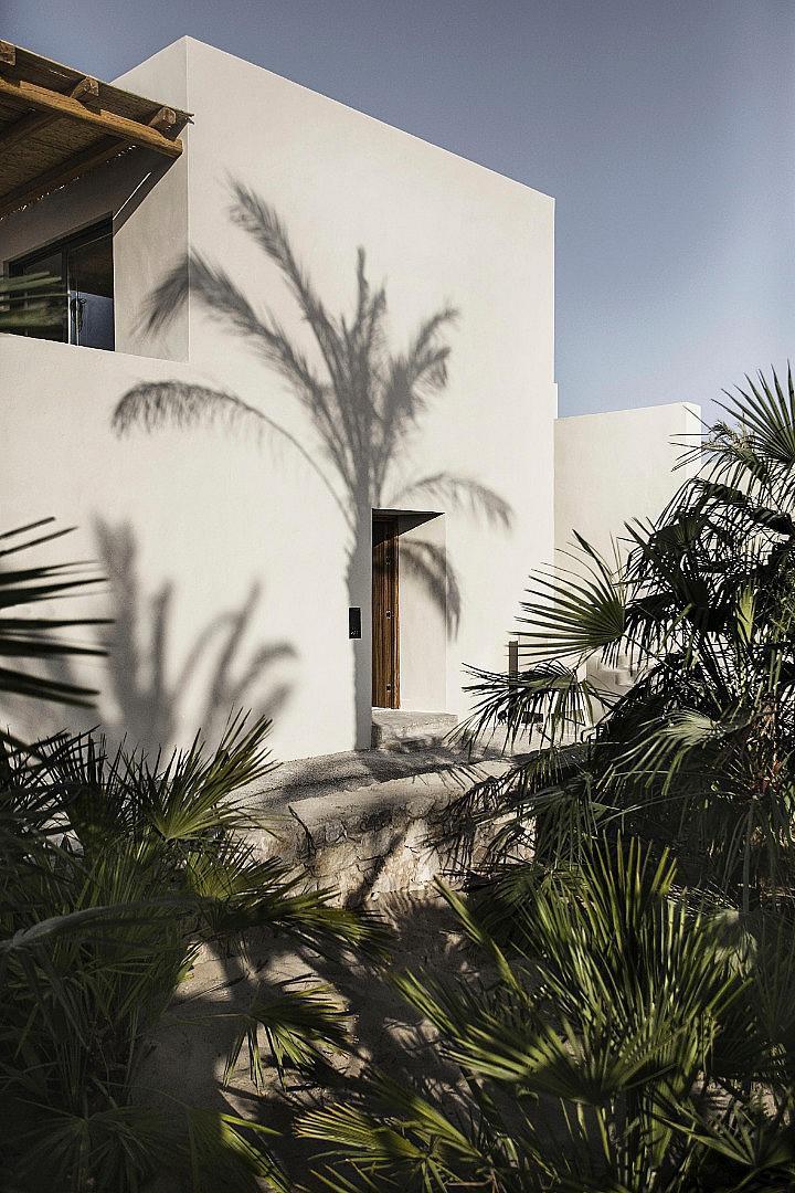 Тук дори палмите знаят да разказват истории...