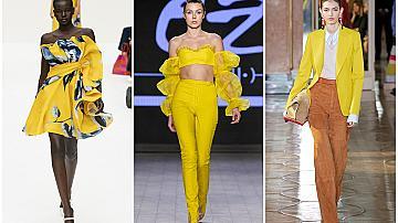 Как жълтият цвят влияе на настроението ни?