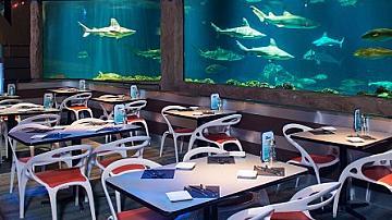 Топ 10 впечатляващи подводни ресторанти